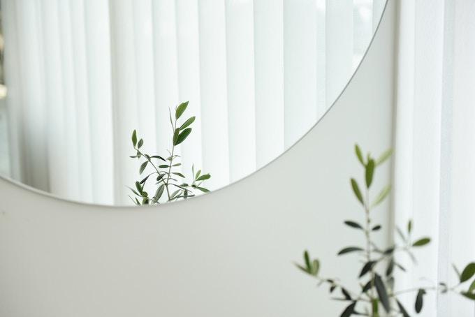 キレイな鏡と観葉植物