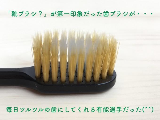靴ブラシが第一印象だったエビスの歯ブラシ